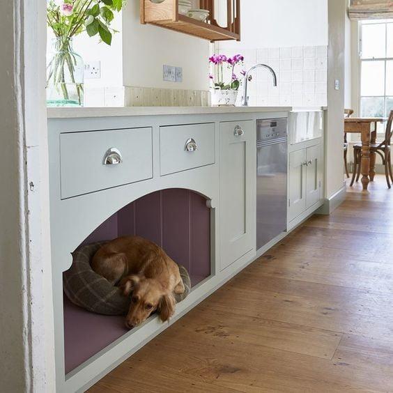 اتاق برای حیوان خانگی
