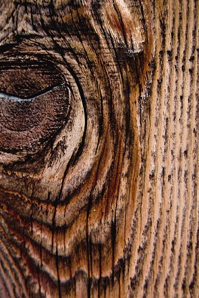 احساس لمس چوب, چوب و سلامتی