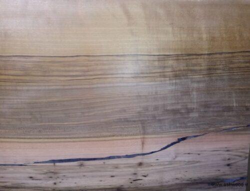 تخته چوب اسلب گردو با قیمت انواع اسلب چوبی