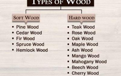 15  تا از انوع چوب محبوب مورد استفاده در صنعت ساختمان سازی !