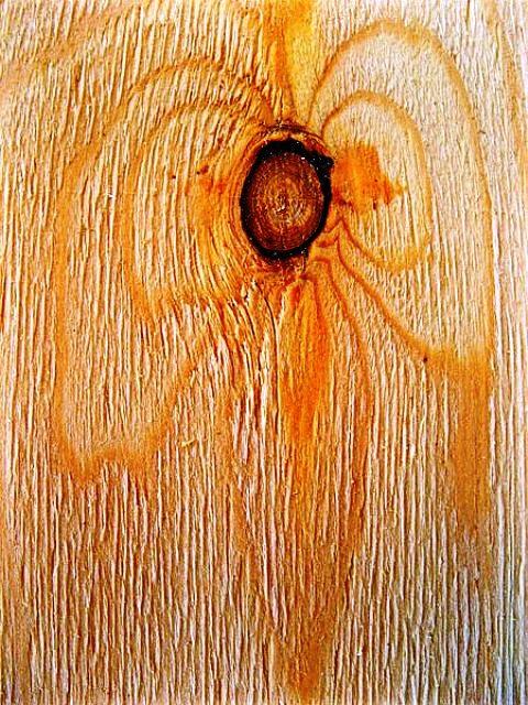انواع چوب و روکش چوب طبیعی در دکوراسیون چوبی  (1)