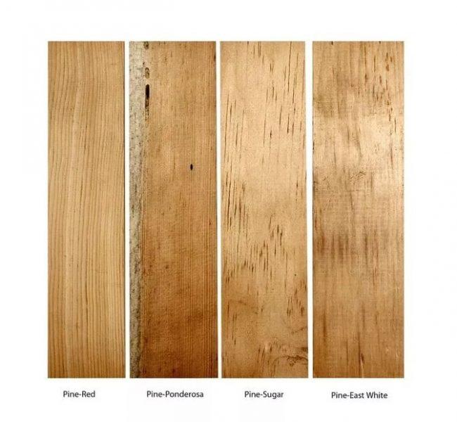 انواع چوب کاج