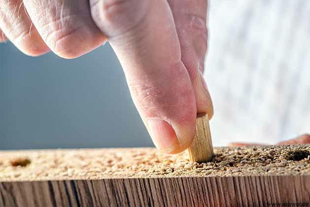 انواع مختلف چوب و کاربرد آنها