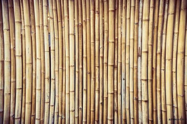 معرفی انواع چوب , تحقیق درباره انواع چوب