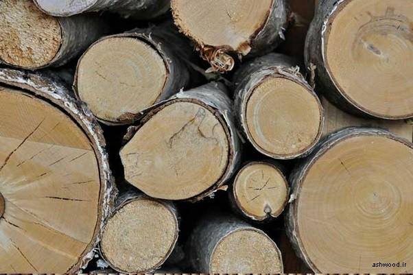 چوب توس