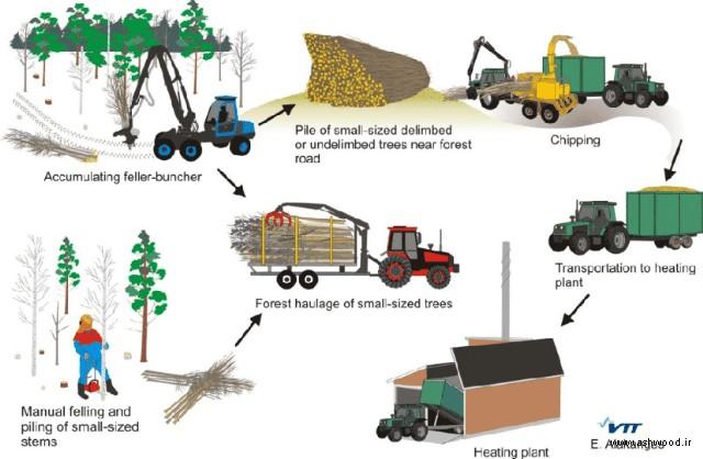 تولید چوب ترمووود