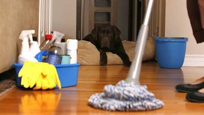 اگرمیخواهید یک خانه تکانی فوری انجام دهید!