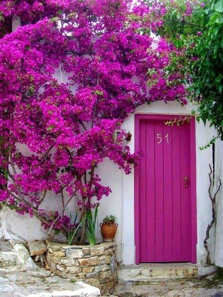 درب های چوبی رنگی زیبا