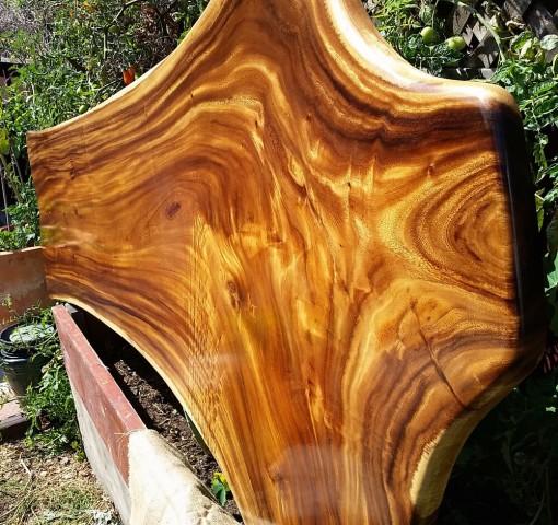 اسلب چوبی درخت باران
