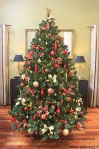 درخت نوئل برای کریسمس