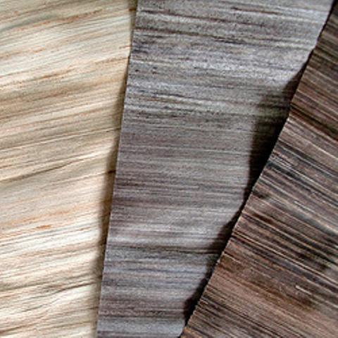 جالب و دیدنی روکش چوب درخت موز در دکوراسیون داخلی