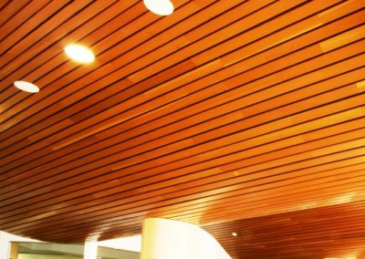 سقف کاذب لمبه  (2)