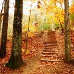 عکس های پاییز ، عکس های پاییزی زیبا ، مناسبتهای فصل پاییز ، عکس های پاییزی عاشقانه