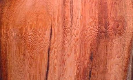 چوب سرخدار , تشخیص چوب سرخدار