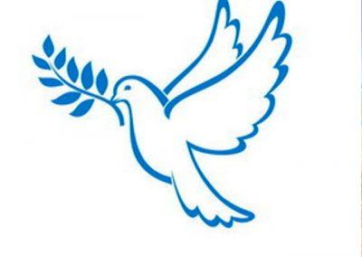 صلح زیبا