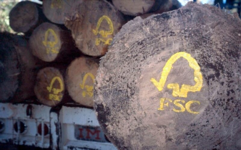 چوب اصلاح شده fsc