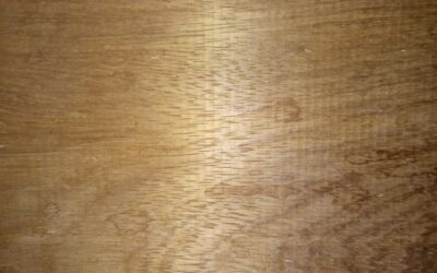 خرید چوب ساج ایروکو جهت ساخت درب پروژه آلمان