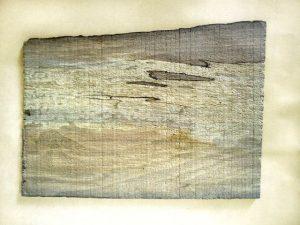 چوب خشک شدهٔ توسکا - برش مماسی. بخشهای زرد رنگ در وسط، ناشی از تاثیر فرایند خشک شدن در چوب توسکاست.