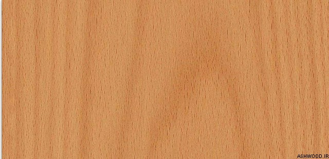 چوب راش چیست؟ شناسایی انواع چوب و روکش راش