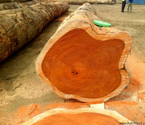 مبلمان چوبی چوب ساج چقدر عالی است؟
