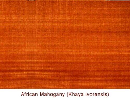قیمت انواع چوب, قیمت چوب+ معرفی انواع چوب و کاربرد آنها