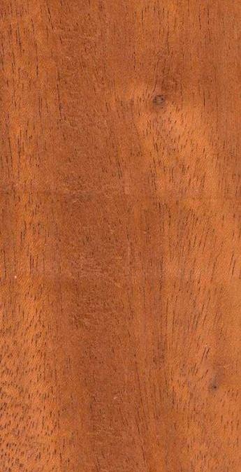 انواع چوب و تخته : افرا ، ماهاگونی يا آکاژو