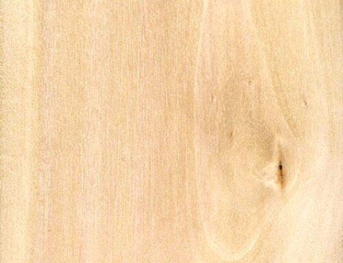 درخت ممرز ,  چوب ممرز