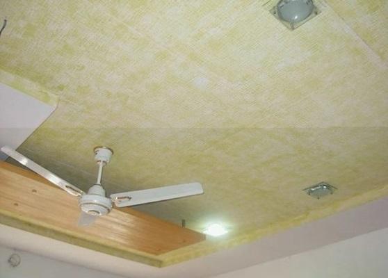 نئوپان در سقف سالن های اجتماعات، مراکز رایانه ای، سالن های سینما و تئاترها