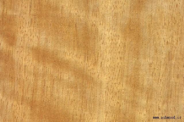چوب مووینگویی Movingui Ayan ، نیجریه Satinwood
