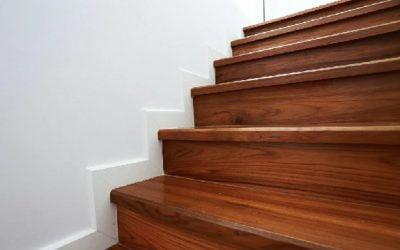 گونه های چوب : برای ماندگاری پله ها چه چوبی بهتر است ؟