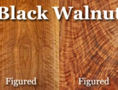 چوب درخت گردو ویژگی چوب گردو کاربرد چوب گردو , انواع چوب گردو