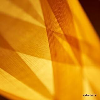 چوب معجزه خداوند