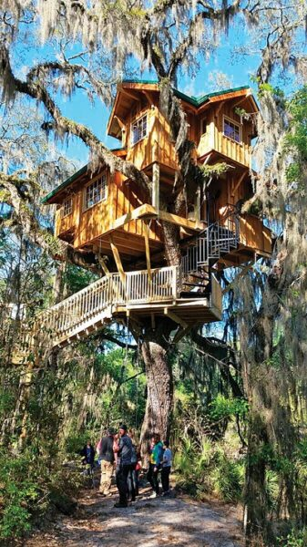 عکس کلبه چوبی درختی , در دل جنگل و طبیعت یک خانه درختی را اجاره کنید