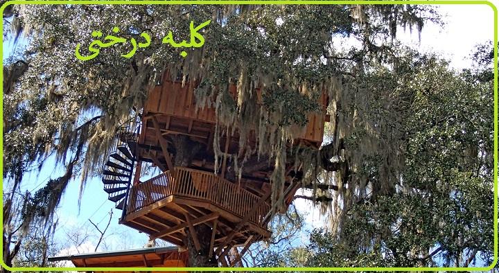 کلبه چوبی درختی , خانه ای چوبی بر روی درخت در دل طبیعت