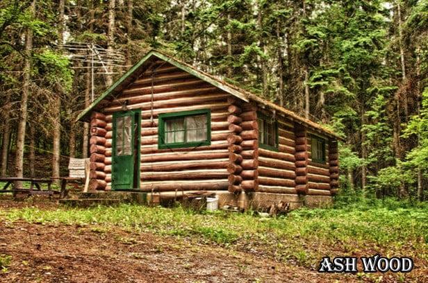 کلبه چوبی , ساختمان چوبی