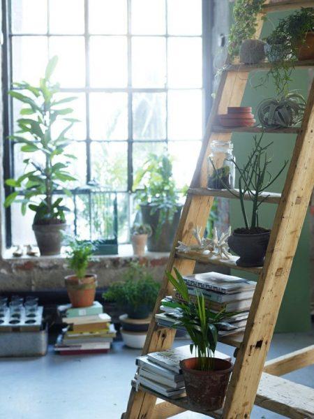 گلخانه با دکوراسیون چوبی