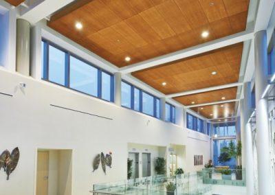 سقف کاذب چوبی ، قیمت سقف کاذب چوبی
