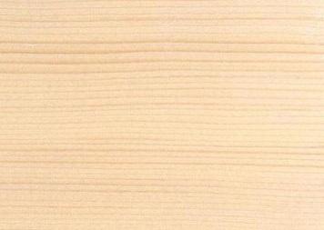 قیمت چوب کاج اسپروس