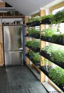 دکوراسیون آشپزخانه، دکوراسیون آشپزخانه چوبی، کابینت آشپزخانه، مدل های فضای سبز،