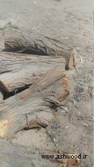 چوب درخت کرت , چوب بابل