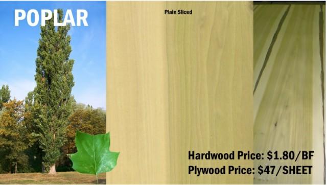 چوب چنار و معرفی انواع چوب