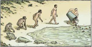 درباره محیط زیست