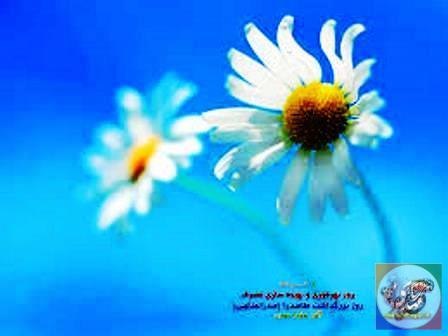 1 خرداد ؛ روز بهره وری و بهینه سازی مصرف انرژی