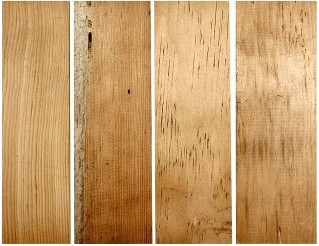 چوب کاج- چهار گونه رایج چوب کاج