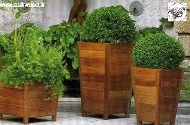 ایده هایی زیبا برای داشتن یک باغچه دیواری بسیار زیبا