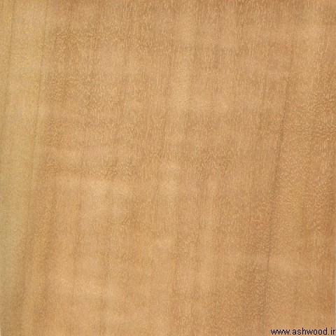 چوب صنوبر اروپایی