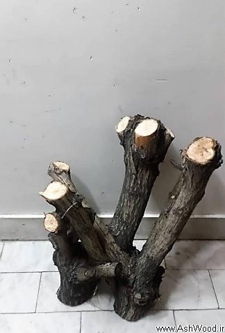 شاخه های تزئینی , شاخه های درخت , تنه و شاخه