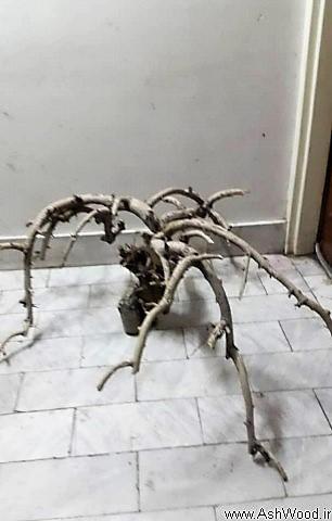خلاقیت با شاخه خشک درخت تزئینی