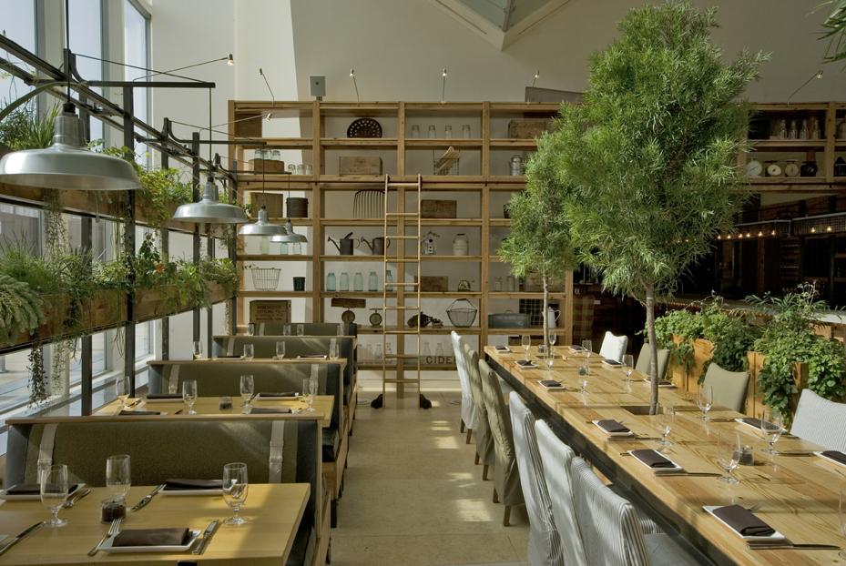 استفاده از درختان سبز و طبیعت در رستوران