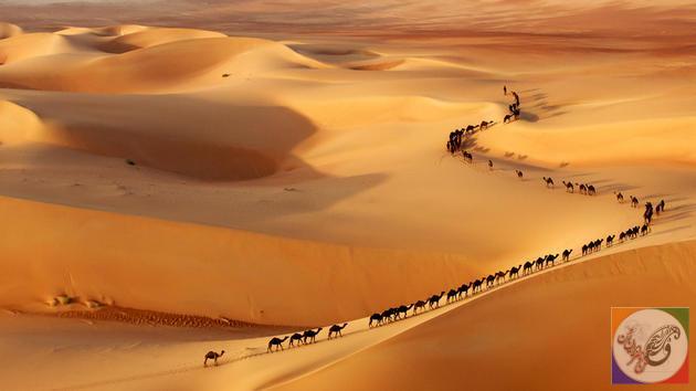 عکسهایی از عکاسان برتر جهان